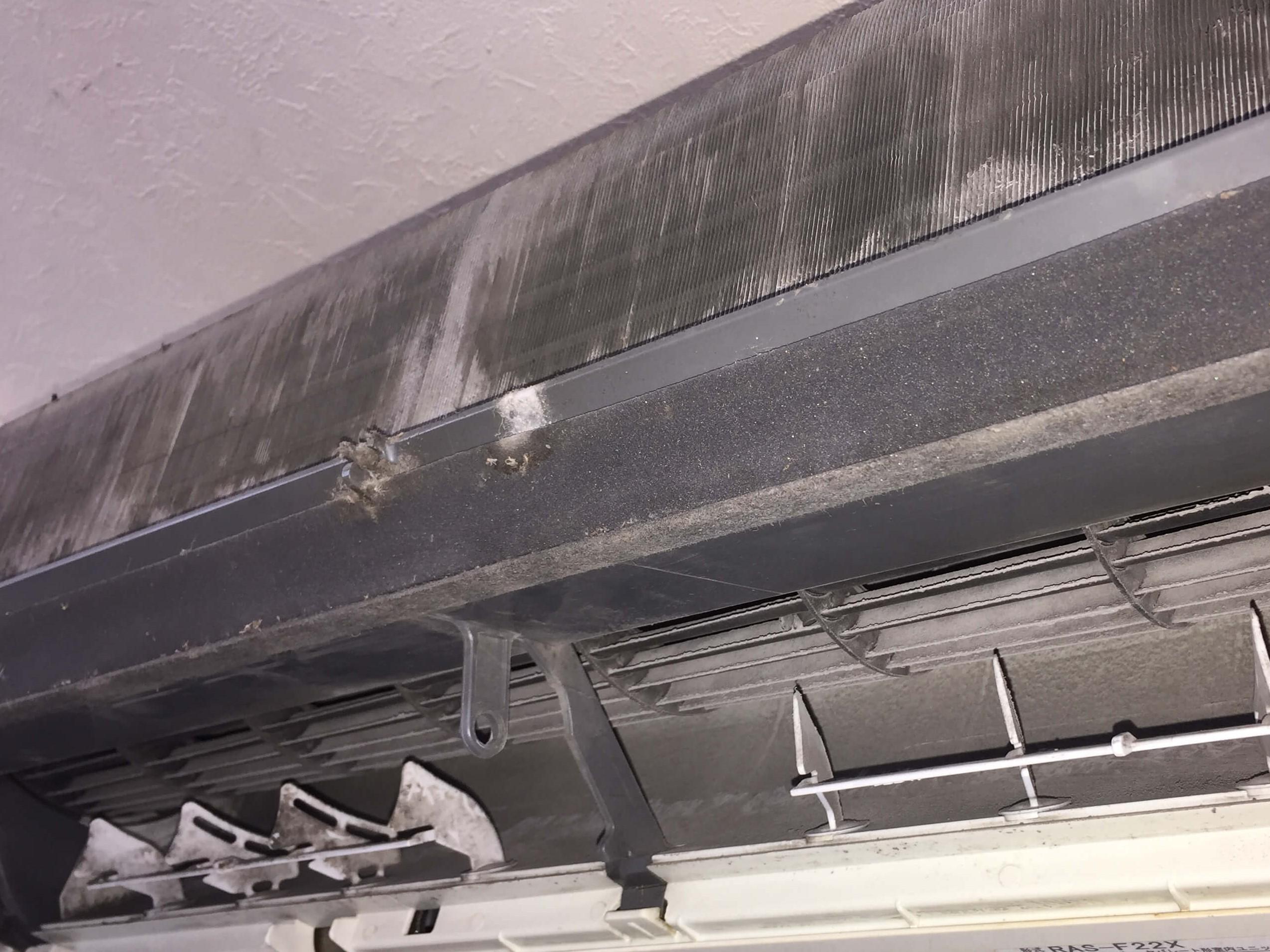 伊丹市 エアコンの掃除(ハウスクリーニング)綺麗に除去・高圧洗浄機で一気に汚れを落とします!ハウスクリーニングはおそうじプラス エアコン・床そうじ・窓まわり・お風呂・トイレ・キッチン・外構・玄関まわりどんなことでもお気軽にご相談下さい!伊丹市・宝塚市・川西市の地域応援!