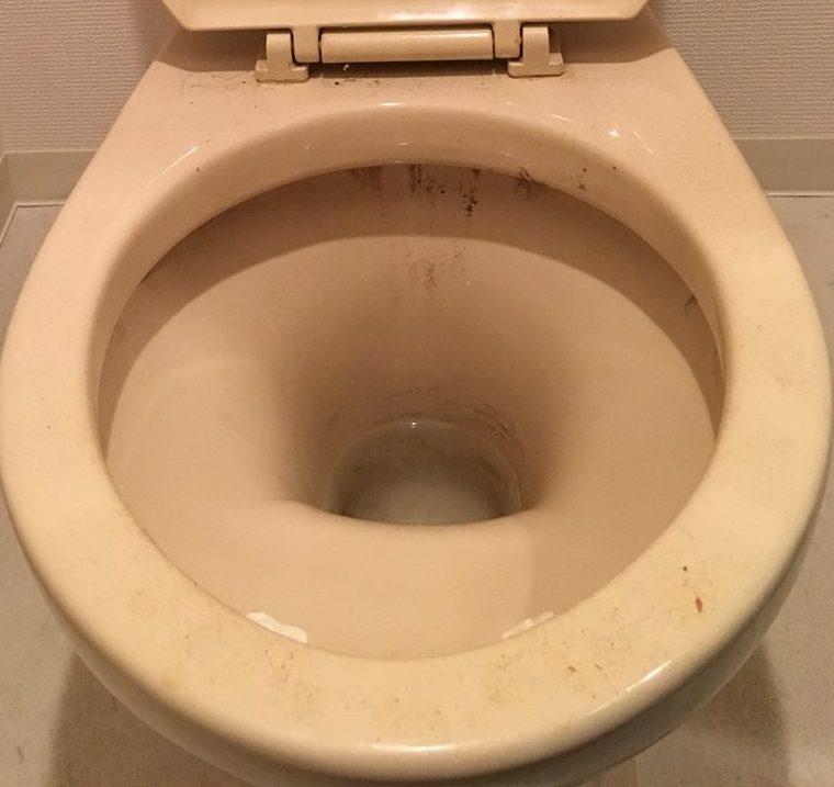 トイレ清掃~ピカピカトイレで気持ち良く♪快適で健やかな生活をお手伝いします!主婦の口コミ人気NO.1!!