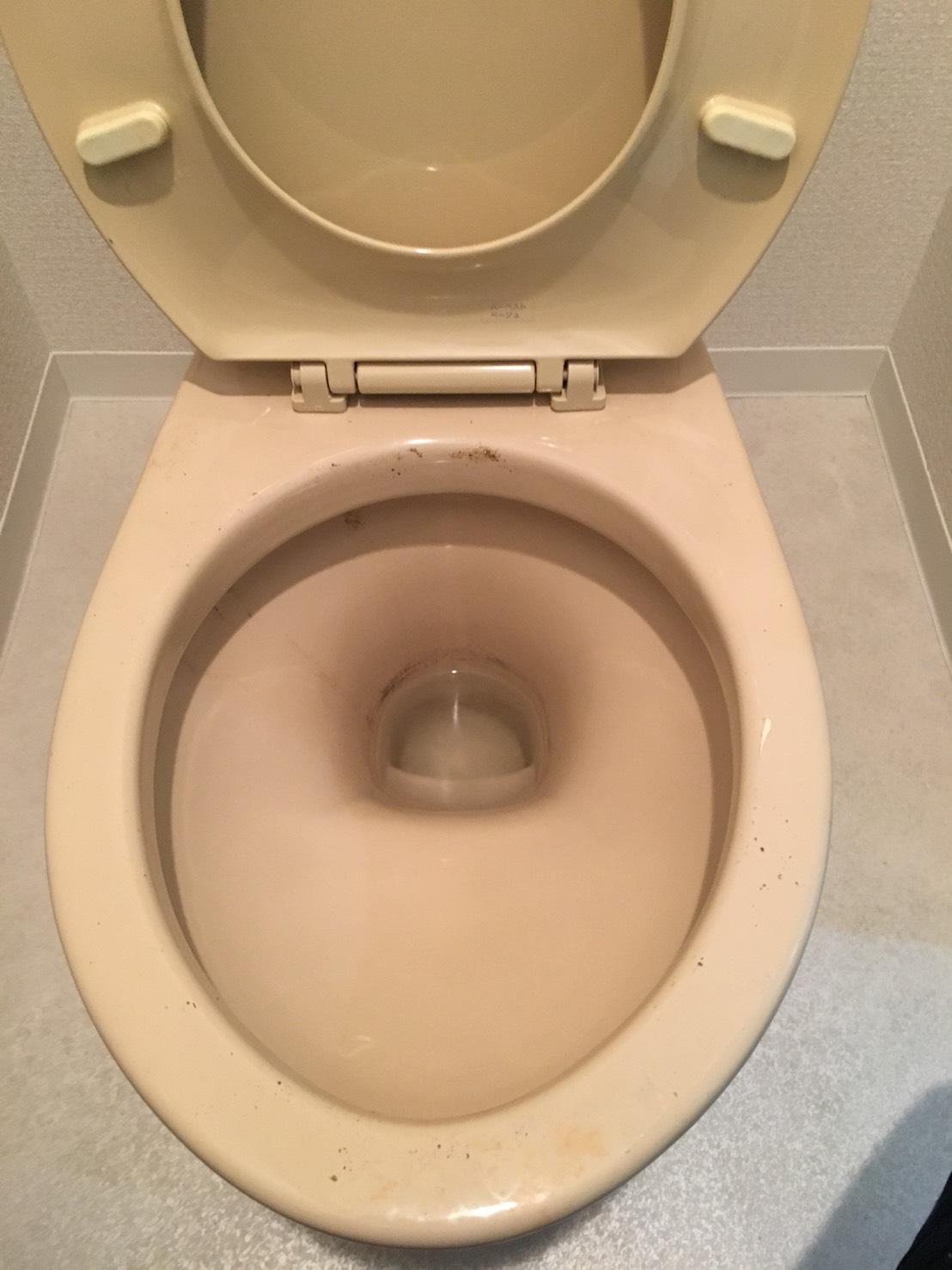 トイレいつも綺麗!職場・店舗のトイレが綺麗になって行く!トイレ掃除が苦手な方は、おそうじプラスにおまかせください!