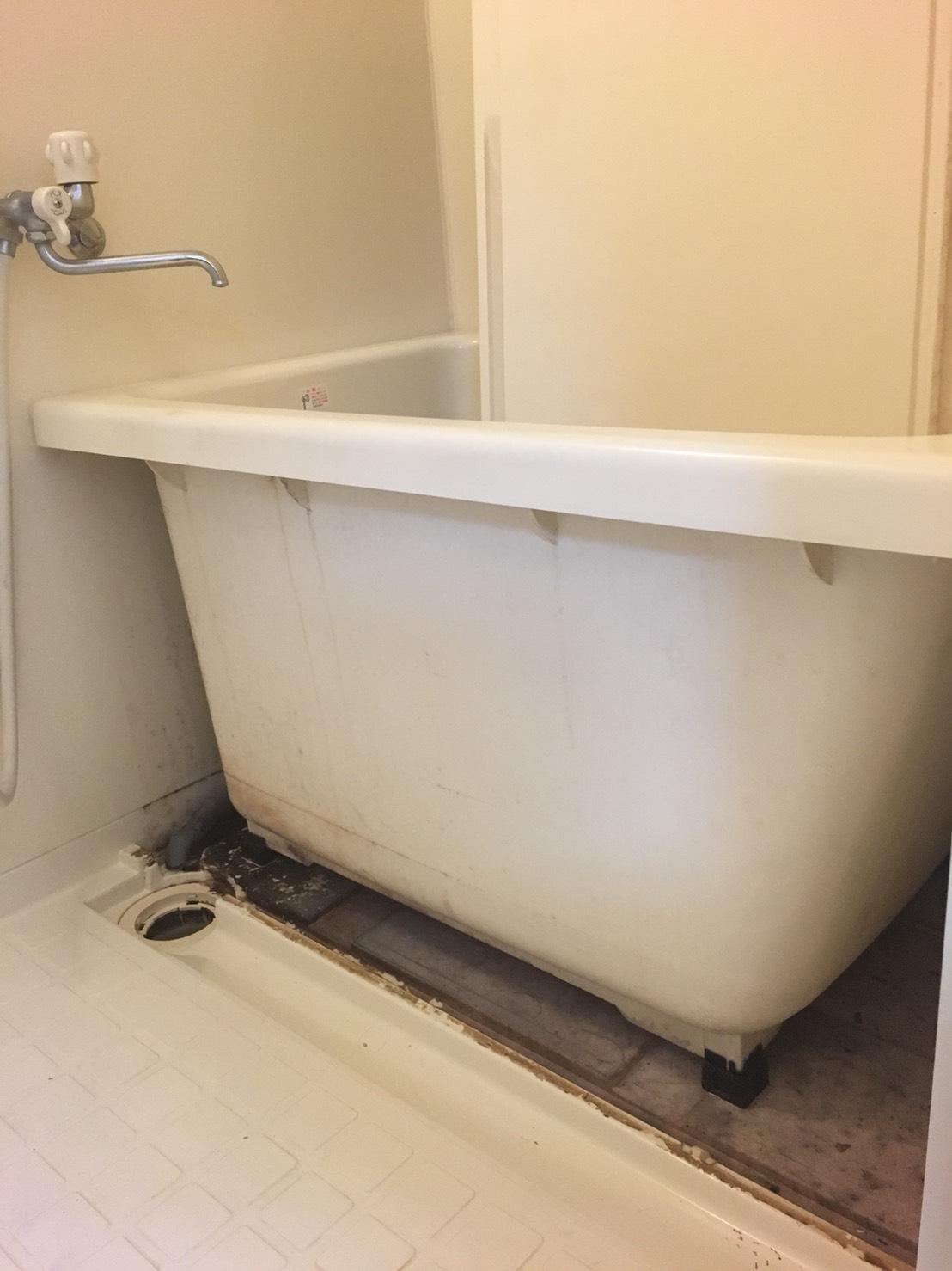 浴室の頑固な汚れ、カビを除去!!お風呂の床をピカピカに!たのんでよかったプロのおそうじ!おそうじプラスにおまかせ下さい!